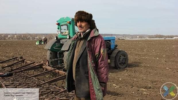 Реальные итоги безвиза: украинцев ждут в Европе только в качестве гастарбайтеров