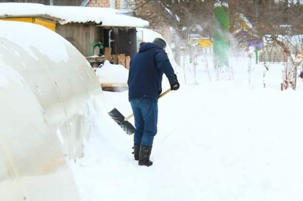 Зачем в теплицу накидывать снег