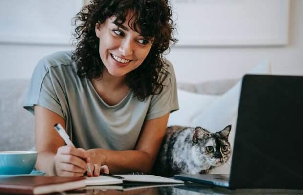 5+ вещей, которые должен знать каждый владелец кошки