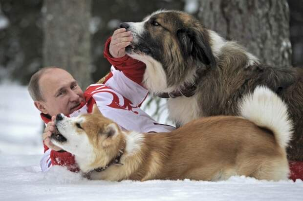 Putin_and_his_dogs-2