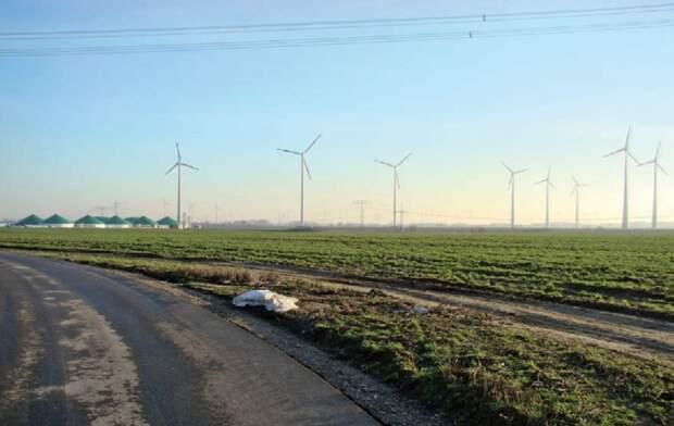 Рис. 10. Должен ли так выглядеть аграрный ландшафт будущего? Нынешний «антикультурный ландшафт» c его полями зелёной ржи [в стадии колошения в мае, используется как ранний зелёный корм скоту в закрытых комплексах, или в биогазовых установках] в севообороте с кукурузой на биотопливо, ветряки или линии электропередач — как здесь в Бранденбурге — не оставляют ни единого шанса биоразнообразию.