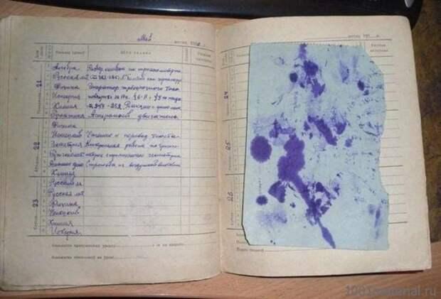 Как проходила жизнь каждого советского школьника