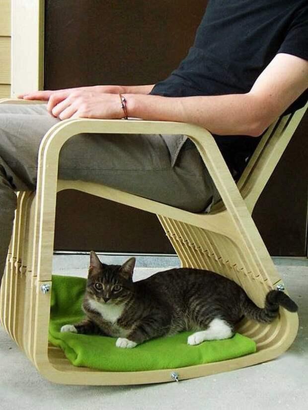 cathouse23 Дизайн для котов