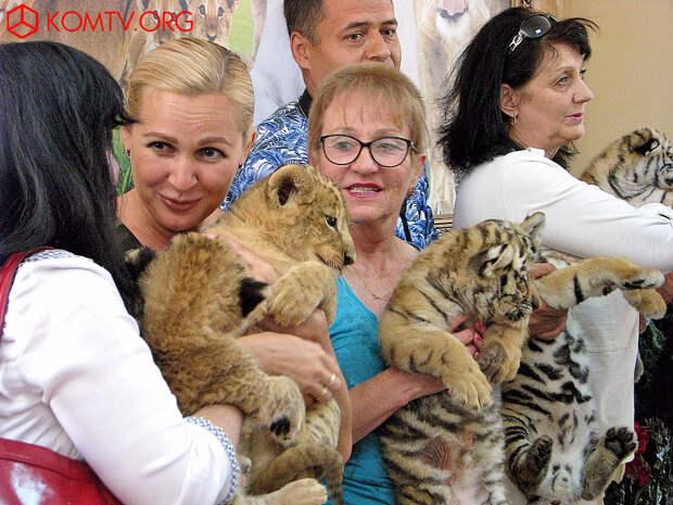 Тайган тигры 1