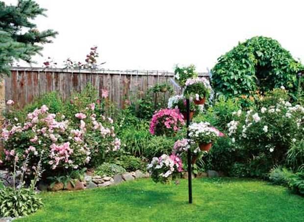 Маленький сад Елены