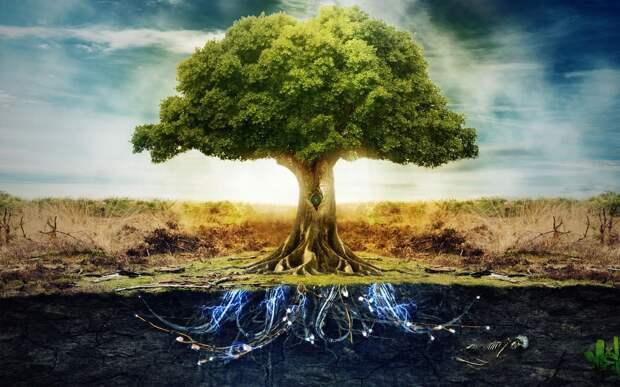 Дух Предков