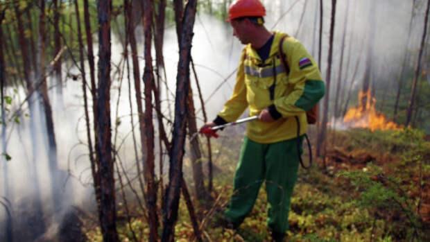 Сегодня на территории региона зарегистрировано 17 лесных пожаров