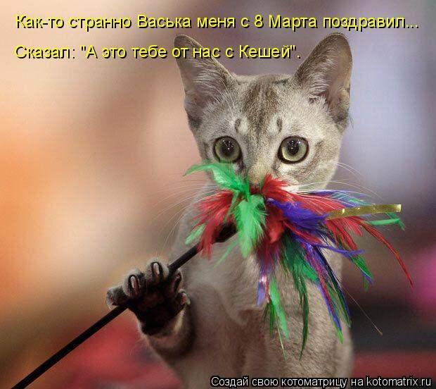 """Котоматрица: Как-то странно Васька меня с 8 Марта поздравил... Сказал: """"А это тебе от нас с Кешей""""."""