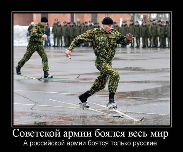 Только русские! Такого вы больше нигде не уведите! демотиваторы, россия, русский человек, юмор