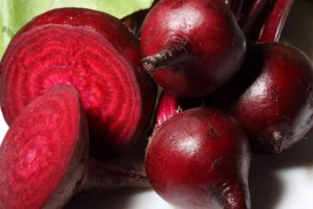 Полезные свойства красной свеклы