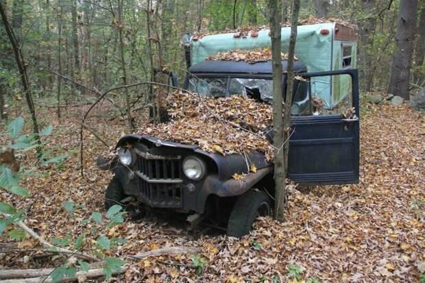 Старая техника вообще часто встречается в безлюдных лесах