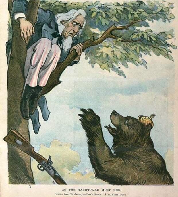 1901 США медведь, россия