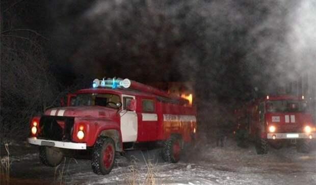 Трех детей изгорящего дома спасли пожарные вНовотроицке