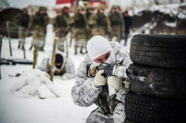 Натовские стандарты Украины: путь в военный блок для Киева может оказаться непреодолимым