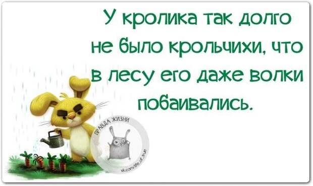 5672049_1447960873_frazki8 (604x360, 30Kb)