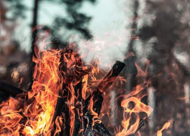 Устинов раскритиковал противопожарную безопасность в Крыму