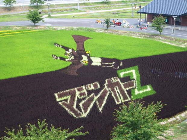 landart04 Необыкновенные картины на рисовых полях