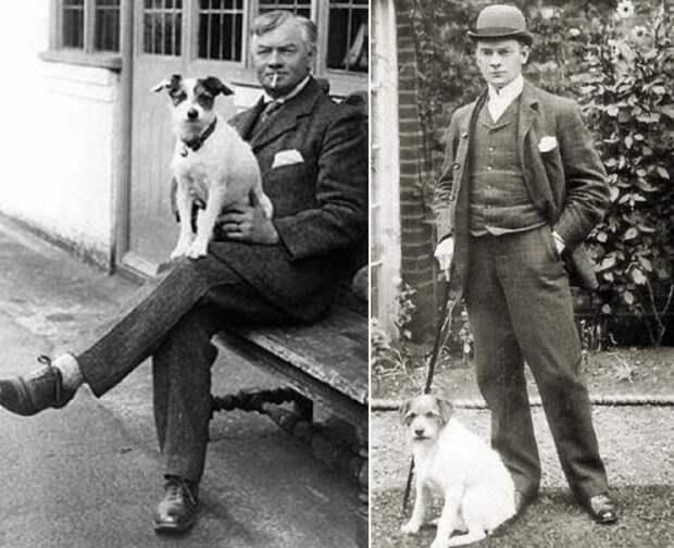 Вымышленный фокстерьер Монморанси вскоре стал настоящим псом Джимом