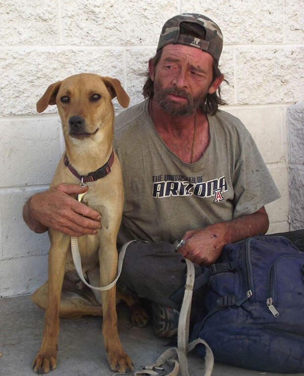26. Бездомные друзья  бездомный, любовь, собака