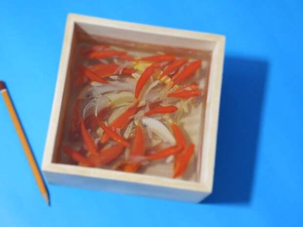 Невероятно объемные картины аквариумных рыбок японского художника Riusuke Fukahori