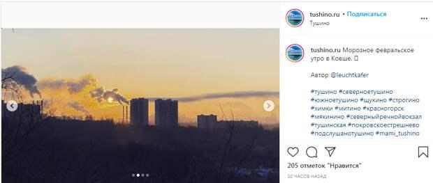 Фото дня: морозное утро на склоне Сходненской поймы