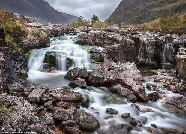 Лучшие работы конкурса фотографий природы Великобритании Scottish Nature Photography Festival