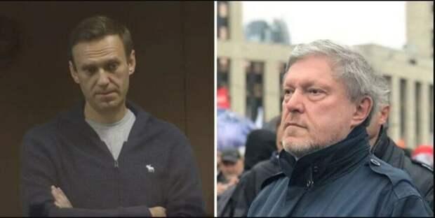 Явлинский извинился за статью про Навального...
