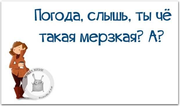 5672049_1447960865_frazki13 (604x356, 27Kb)
