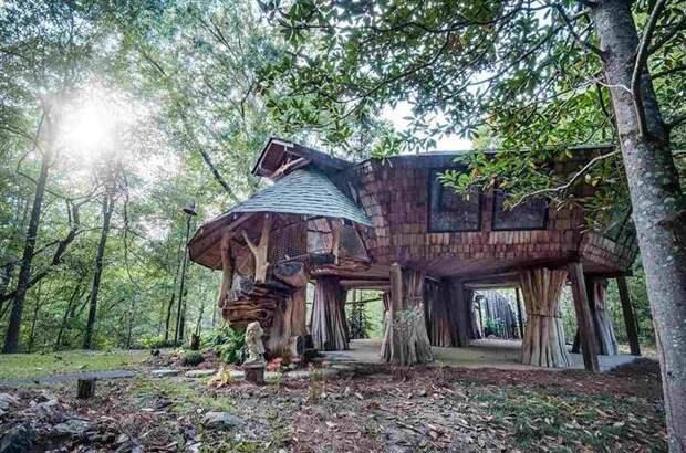 Уютный лесной домик за 135 000 долларов дом, лес