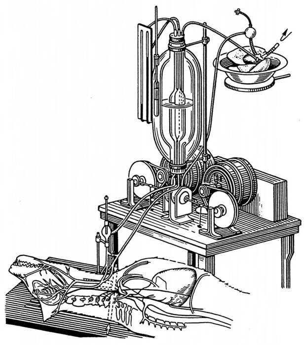 9 современных «Докторов Франкенштейнов», ставящих странные эксперименты