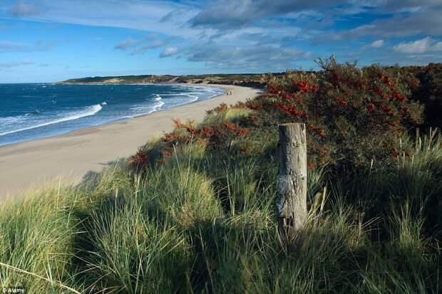 Самые красивые пляжи Британии: золотой песок и синее море