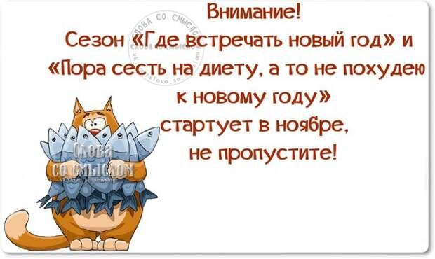 5672049_1447960846_frazki3 (604x361, 48Kb)