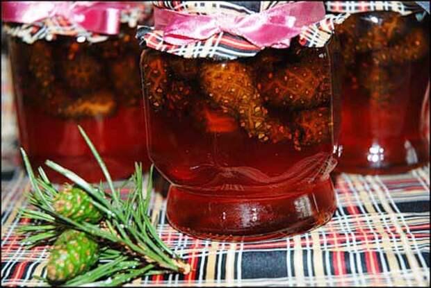 Варенье из сосновых шишек - пора собирать и готовить!