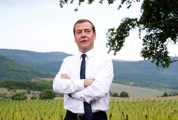 День рождения Дмитрия Медведева