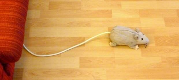 """Удлинитель + мышка = """"удлимышь"""""""