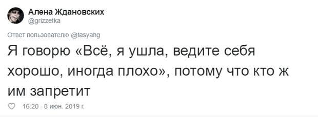 25. Тася Никитенко, животны, забавно, кот, кошка, люди, твиттер, юмор