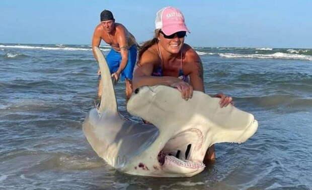 Женщина поймала огромную акулу-молот на удочку