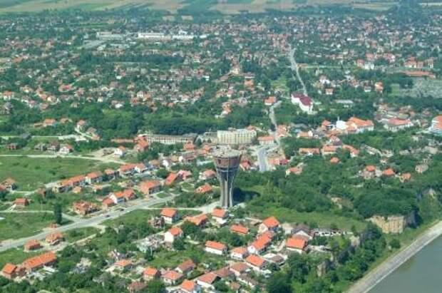 Vukovar_bird_fly.jpg