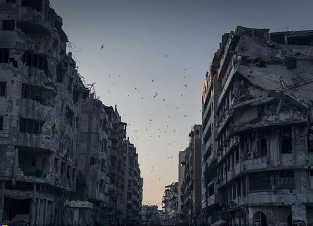 Безмятежность и тревога в одном кадре (Sergey Ponomarev, Сирия).