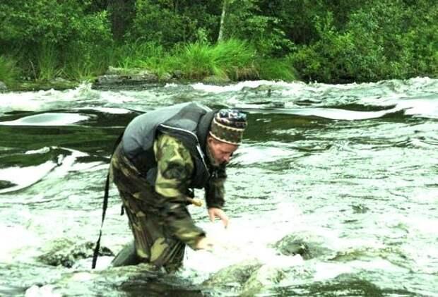 Опасна ли больная рыба