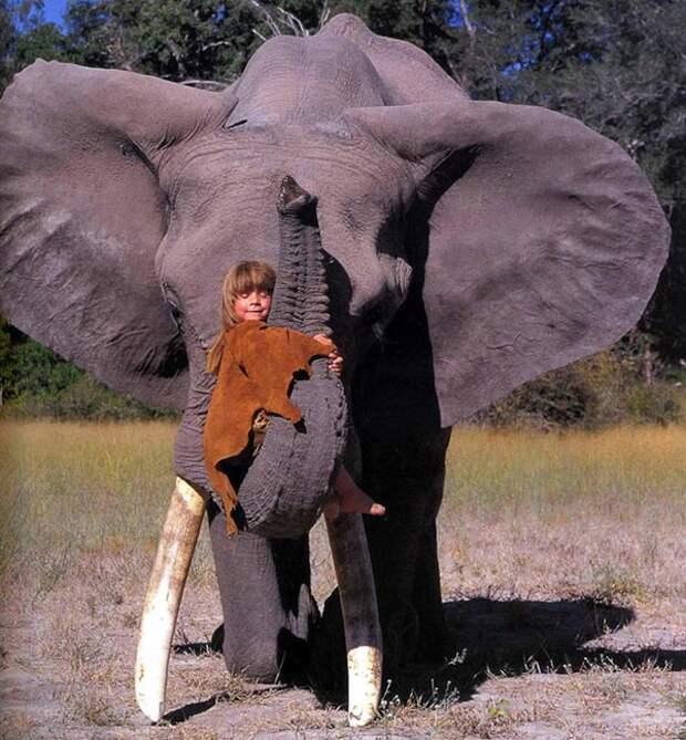 Ребёнок и дикие животные