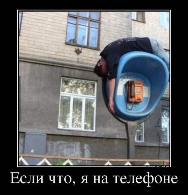 Забавные и веселые демотиваторы для настроения (10 фото)