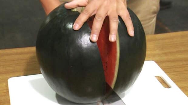 7 самых-самых сортов арбузов