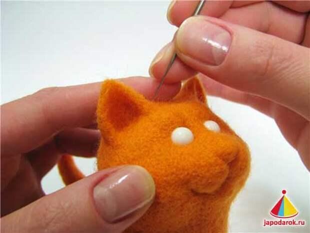 mandarin cat 21