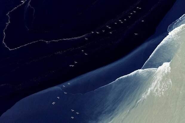 Невероятной красоты воздушные фотографии Ботсваны и Исландии