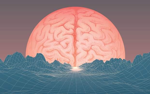 Тест: Все ли вы знаете о работе человеческого мозга?