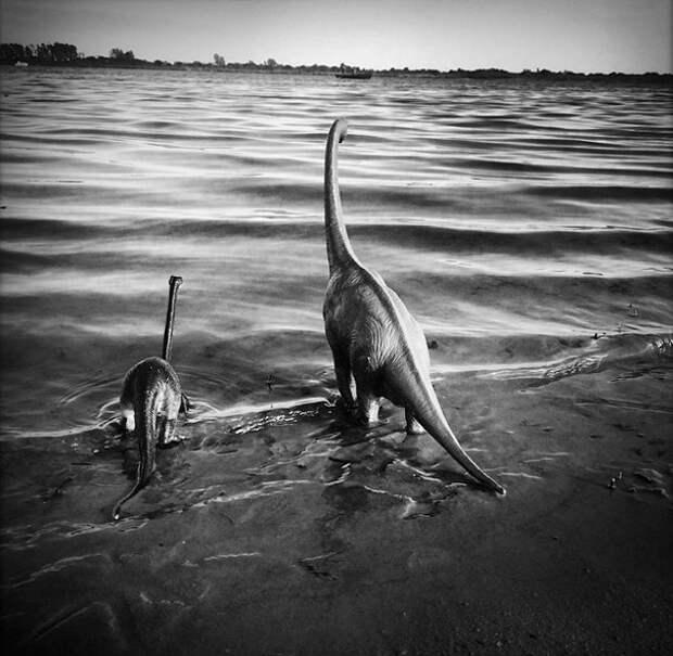 travel-photography-dinosaur-toys-dinodinaseries-jorge-sa_004