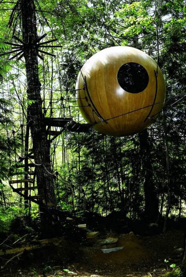 Самые удивительные дома на деревьях