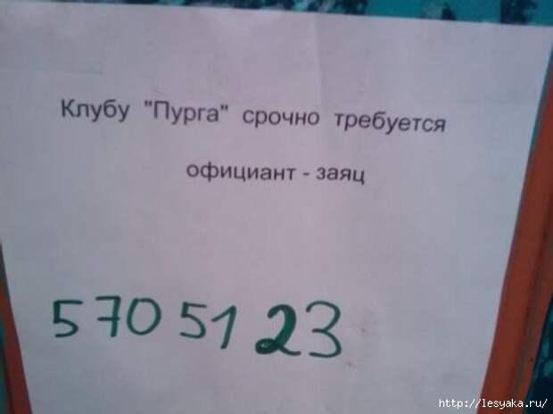 1345055-R3L8T8D-550-44586_467003223551_1267632_n (550x412, 68Kb)