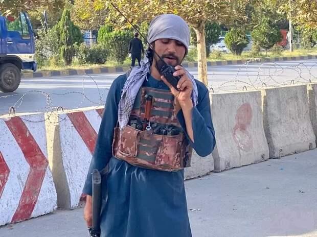 Привыкаем к новой реальности: «Талибан» сообщает о задержании террористов ИГ